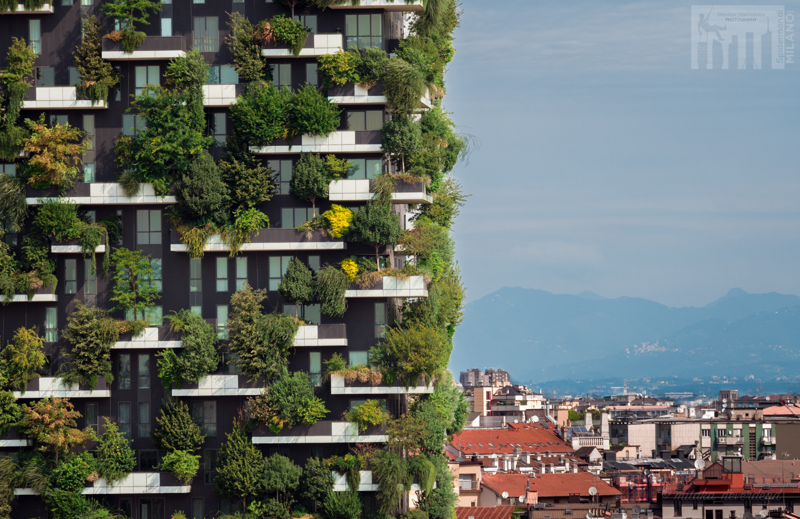 Milan bosco verticale 116m 27 fl 85m 19 fl com for Giardino verticale